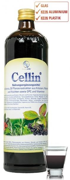 Cellin mit Glas